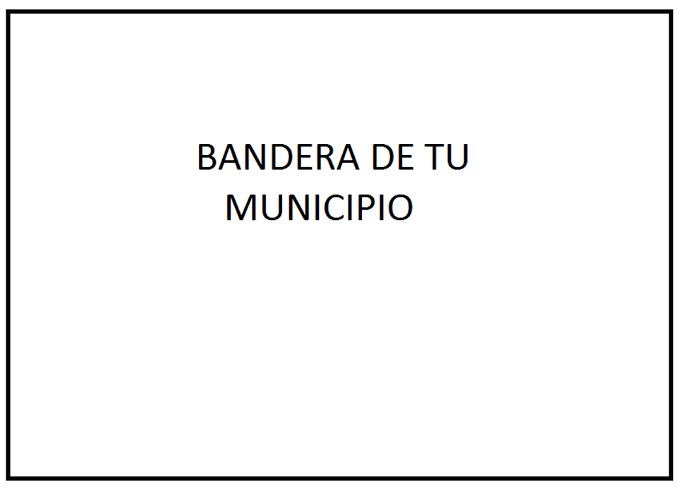 BANDERA-MUNICIPIO